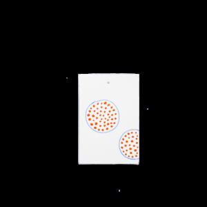 eric Hibelot carte postale porcelaine